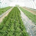 ! Dijon Provence ! Herbes aromatiques