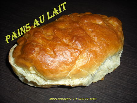 pains_au_lait_r_ussi2