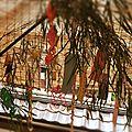 Tanabata, l