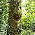 2 <b>arbres</b>