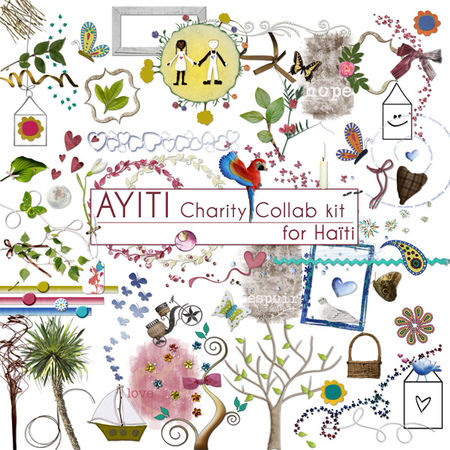 Elements_1_AYITI_Charity_Collab_kit_for_Ha_ti
