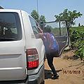 ALLIANCE DES COOPERATIVES RURALES AU BURUNDI