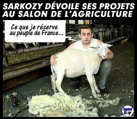 Nicolas Sarkozy ne sait plus quoi inventer pour inverser la courbe des sondages