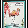 Flirty Flamingo, here I am again