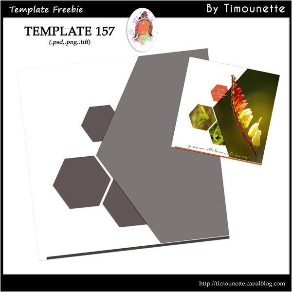 Template 157 Freebie by Timounette