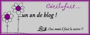 http://storage.canalblog.com/43/97/534715/58861674_p.jpg
