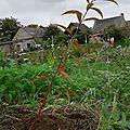 Premières <b>plantations</b> avec Emmanuel Rolland!