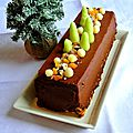 Bûche végétale au potimarron, <b>cacao</b> aux saveurs de Noël