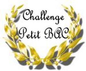 logo challenge petit bac