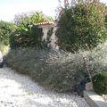jardins d'olivier