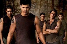 Twilight_2_on_a_vu_le_DVD_et_ses_bonus_image_article_paysage