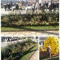 Jardin éphémère sur la <b>Place</b> <b>Stanislas</b> à Nancy