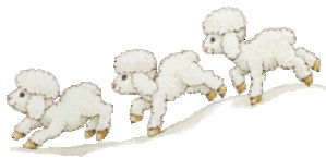 3moutons
