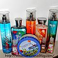HAUL <b>BATH</b> & BODY WORKS AVEC V-INC