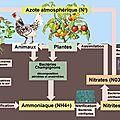 Peut-on cultiver sans chimie ?
