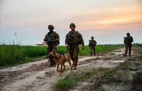 Patrouille avec chien