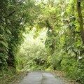 Guadeloupe la surprise est arrivée - 7 -