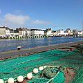 Cotentine