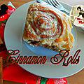 Cinnamon Rolls - Rouleaux à la cannelle recette <b>Disney</b> World's Magic Kingdom