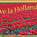 Bienvenue à nos correspondants <b>hollandais</b> !
