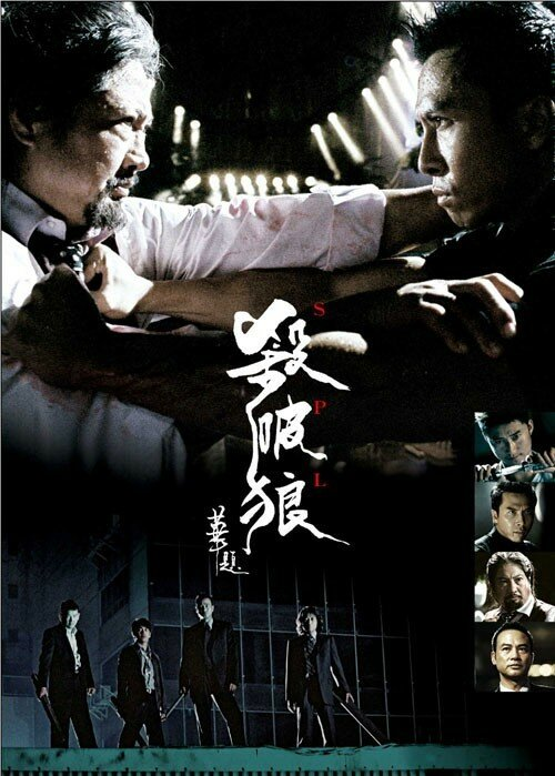 [HK] Sha Po Lang FRENCH DVDRIP XVID preview 0
