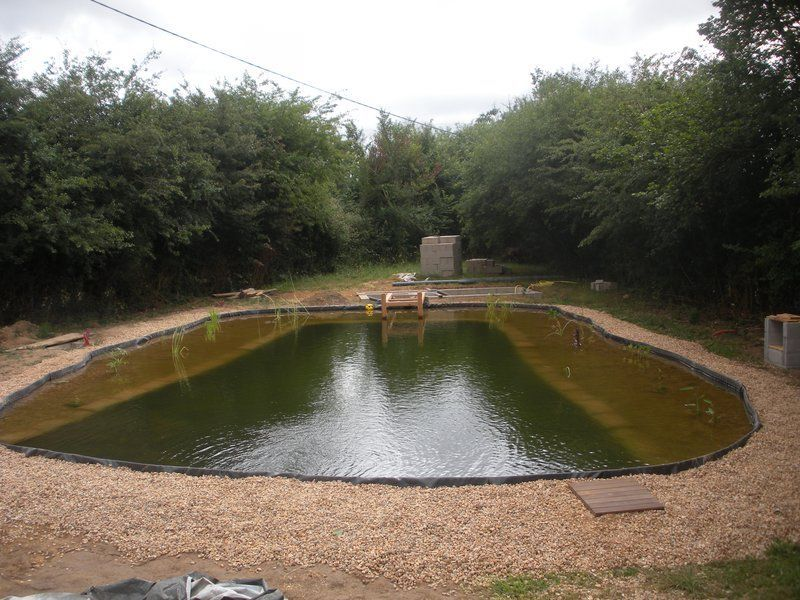 Bassin de baignade naturelle en autoconstruction les plantes for Autoconstruction piscine naturelle