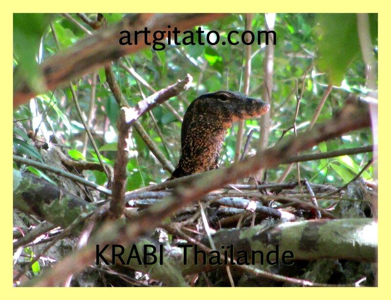 Krabi Artgitato 2015 5
