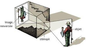 schema_stenope1