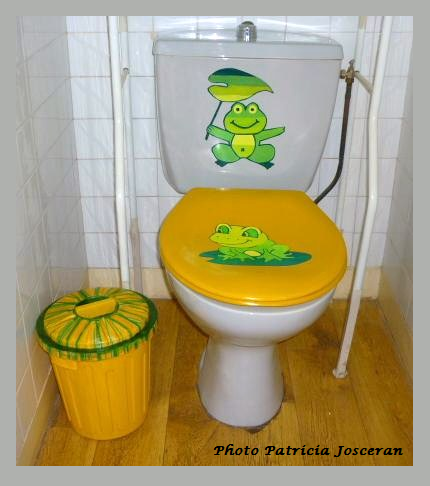 Relooking poubelle wc 00