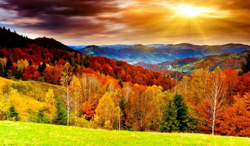 awesome-bright-autumn-scenery-wallpaper,1024x600,61883