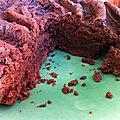 Gâteau chocolat à la <b>farine</b> de <b>coco</b>