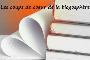 coeur_vs3