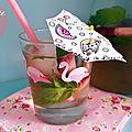Idées boissons fraîches : thé glacé, pomme et menthe et l'eau aromatisée fraise, citron et menthe