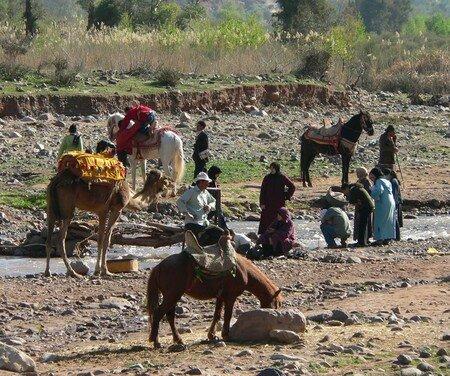 Voyage au Maroc 11698955_p
