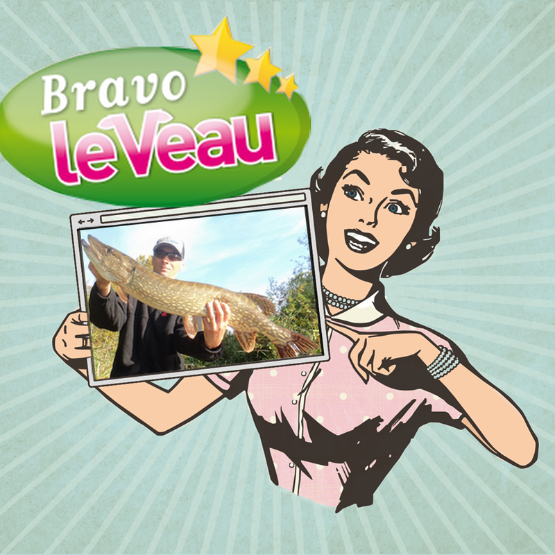Bravo le veau Original - Copie