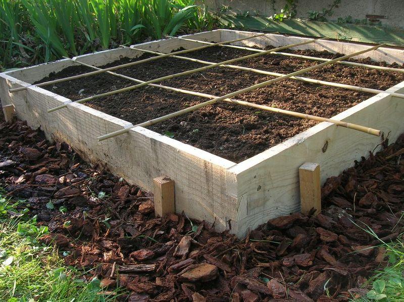 : mon &;potager&; avant, le cadre en bois, et le carré de jardin un