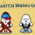 maxi1134