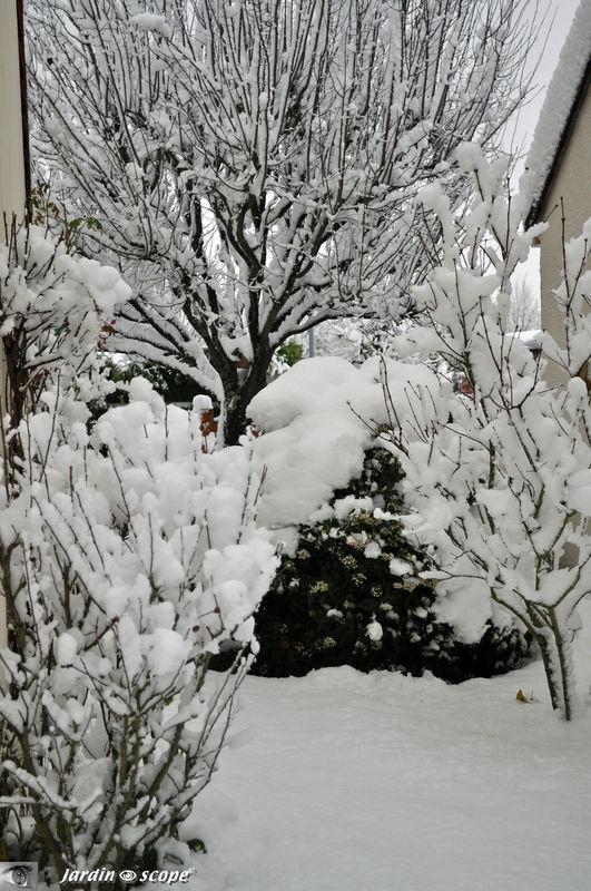 Le Loiret et mon jardin sous 20 à 25 cm de neige 59481592