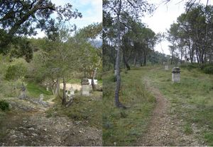 trail_Costes20099