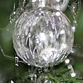 - DELIRES SUR LE SAPIN DE <b>NOEL</b> !!