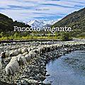 Pâturage nomade - Pascolo vagante : sortie du nouveau livre de Marzia <b>Verona</b>