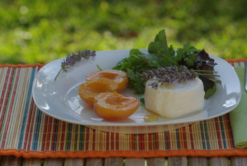 recettes  Marguerite aux abricots