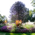 Le tour du <b>Jardin</b> des Plantes d'Orléans