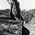 1954-02-18-korea-2nd_division-army_jacket-jeep-020-1