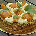 Fantastik abricot-<b>amande</b>