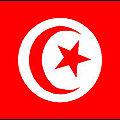Ghannouchi: «Ceux qui font l'éloge de Ben <b>Ali</b> sont des terroristes»