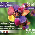 Le JardinOscope, toute la flore et la faune de nos parcs et jardins