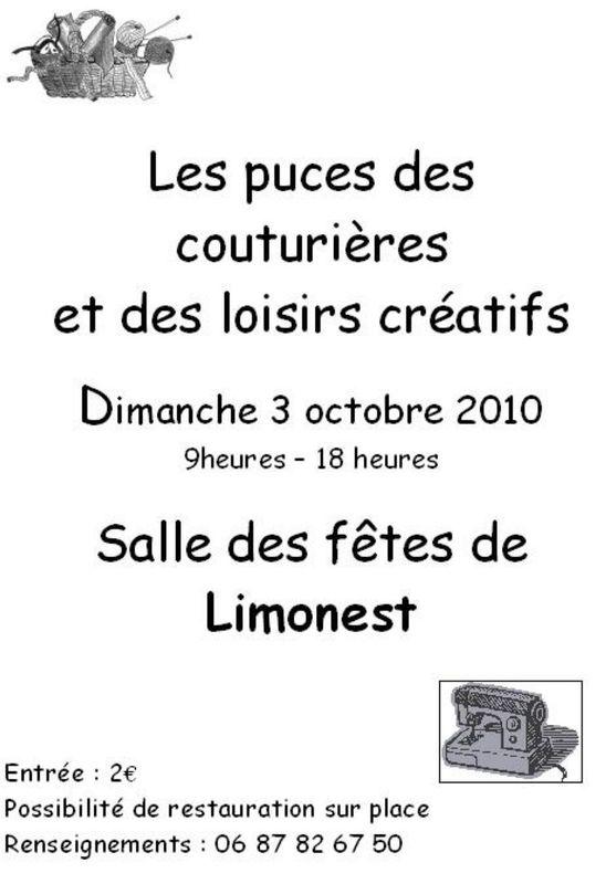 puces_Limonest_2010
