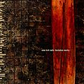 <b>Hesitation</b> Marks - Nine Inch Nails