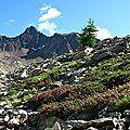 Coup de coeur pour un <b>reportage</b> sur mes montagnes du Mercantour